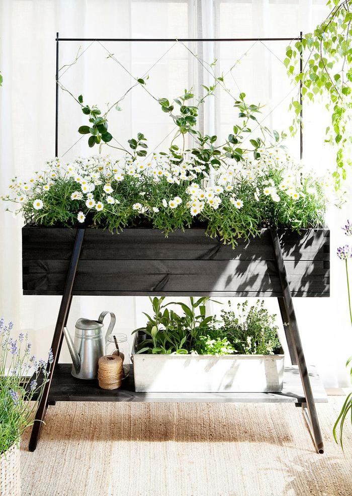 Интериорни бои и зелени растения