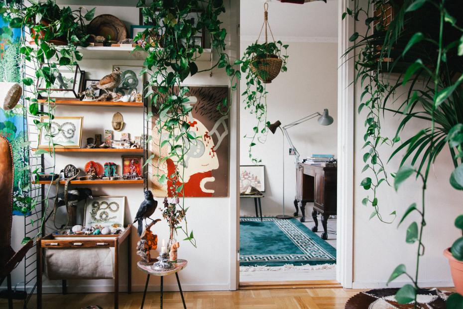 Интериорни бои и флорални мотиви