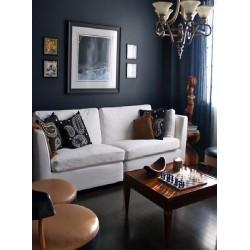 Подходяща ли е тъмната боя за дома?