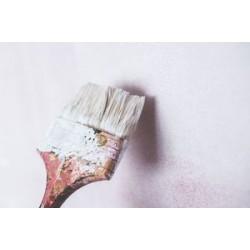 Ефективна ли е боята против мухъл?
